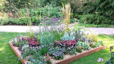 Plantas de Beth Chatto en RHS Wisley Flower Show