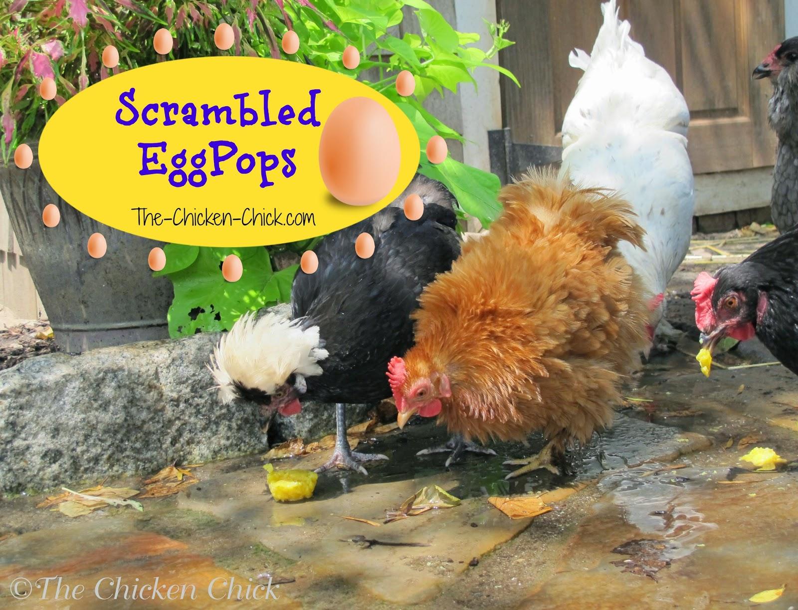 Frozen Scrambled Eggpops