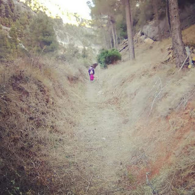 Tramo camino natural Matarraña, acequia, interior