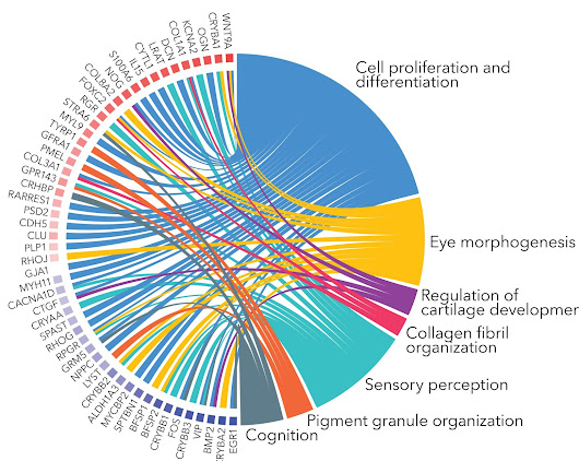 GOPlot package for visualizing functional omics data