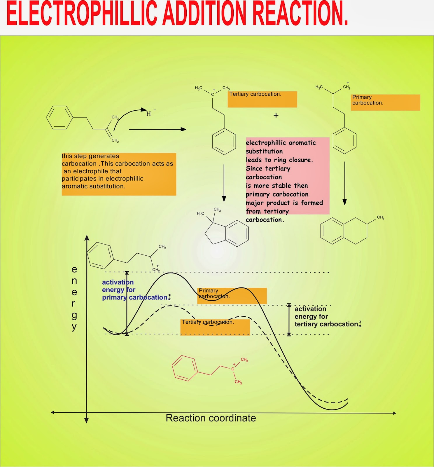 essay relating to electrophillic fragrant substitution