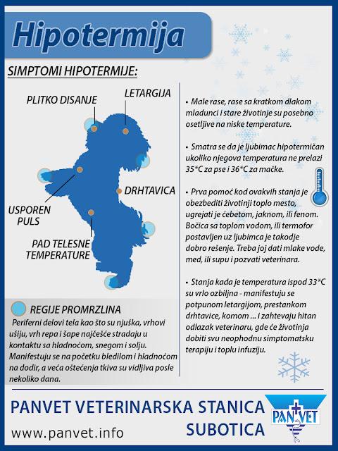 Hipotermija - Panvet infografika