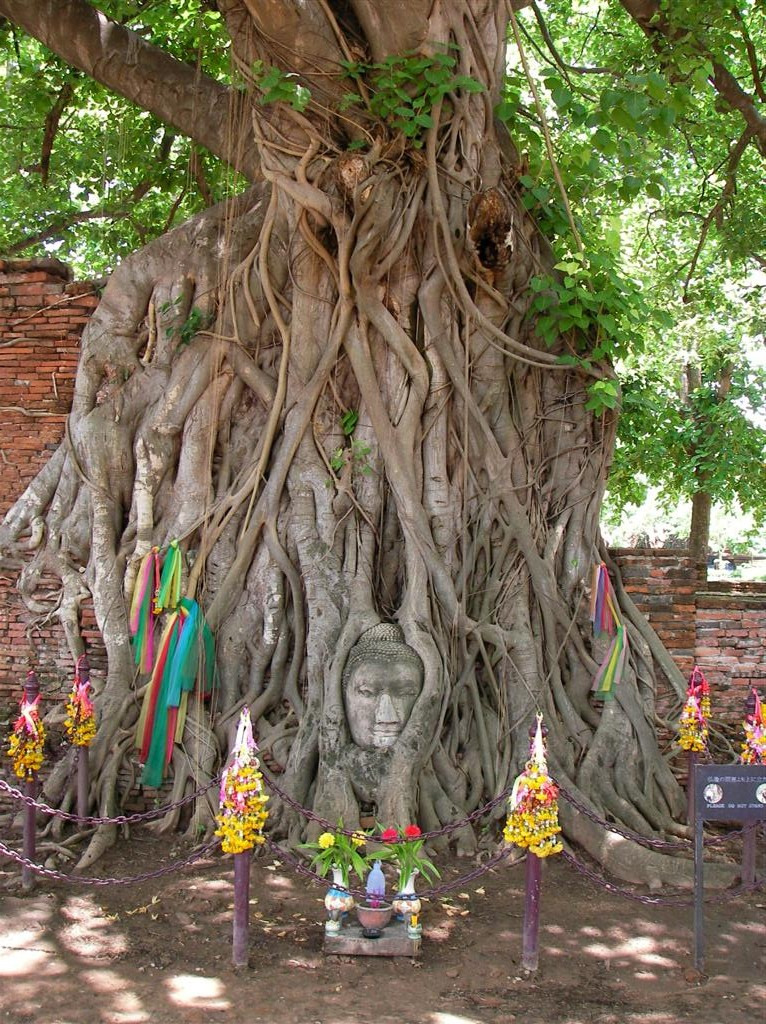 Patrimonio de la Humanidad en Asia y Oceanía. Tailandia. Ciudad histórica de Ayutthaya.