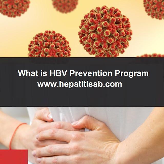 What is HBV Prevention Program