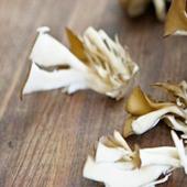 manfaat jamur maitake