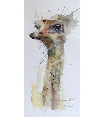Ostrich watercolour painting art