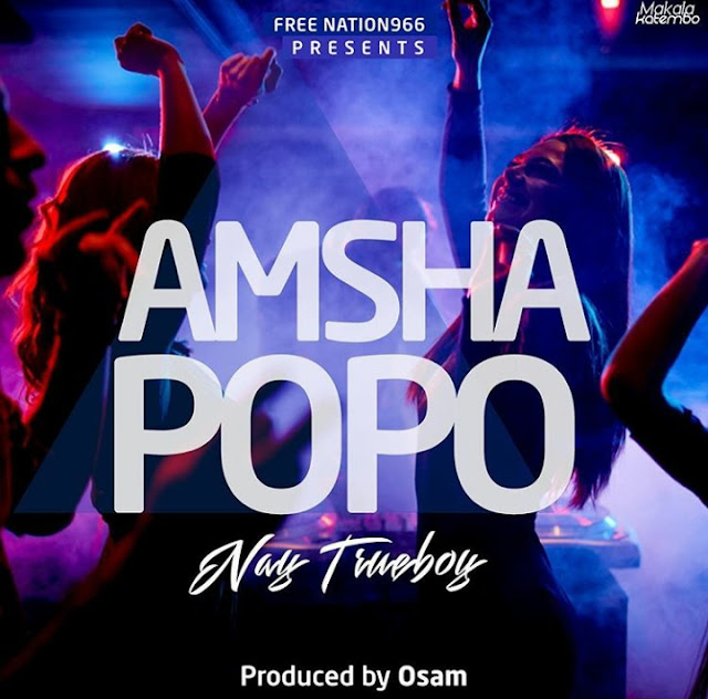 Nay Wa Mitego (Mr Nay) - Amsha Popo