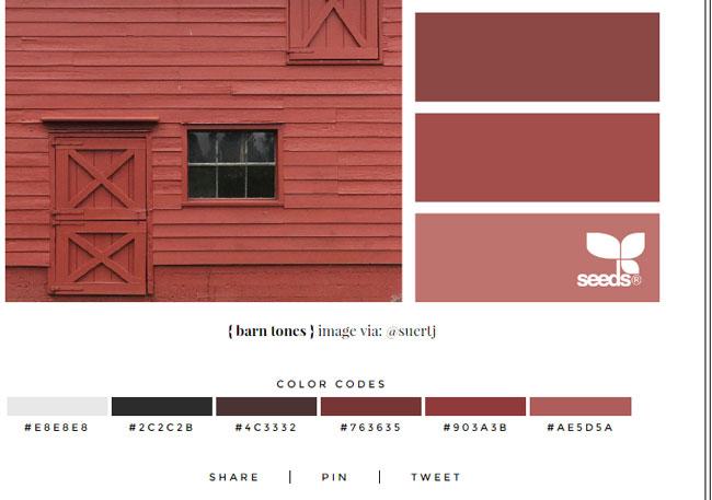 paleta-de-colores-hexadecimales