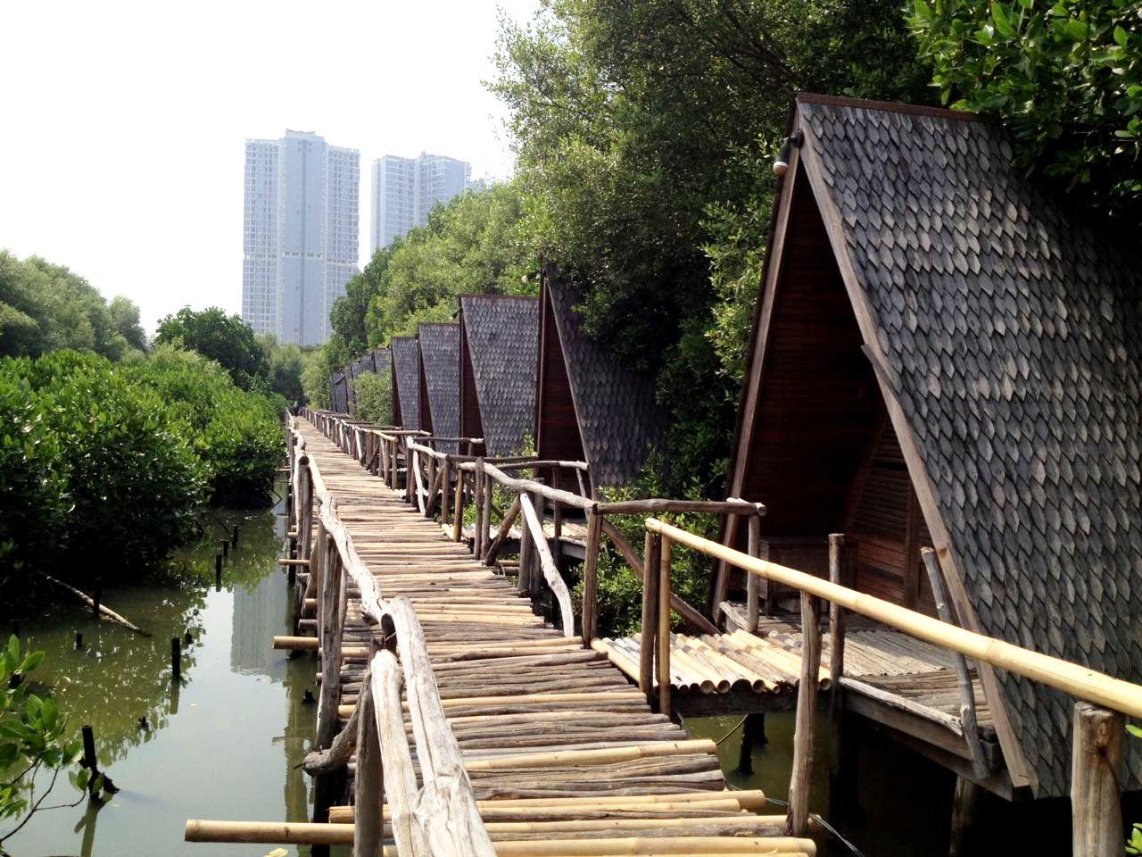 Wisata Murah Jakarta Hutan Mangrove Pantai Indah Kapuk - Winda