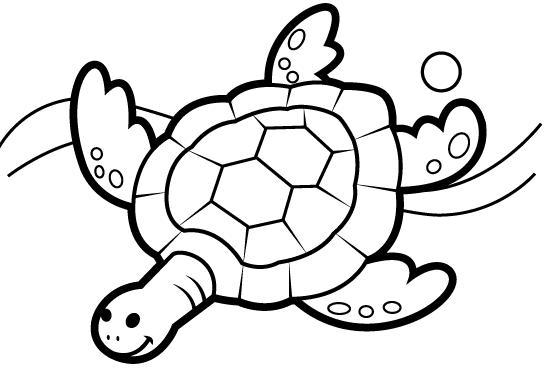 Dibujos De Tortugas Infantiles Para Colorear: RECURSOS Y ACTIVIDADES PARA