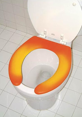 Creative Toilet Seats and Unusual Toilet Seat Designs (15) 8