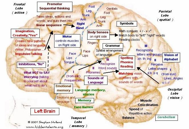 functional brain mapping and the endeavor to understand the working brain