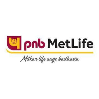 PNB MetLife announces Sameer Bansal as the Chief Distribution Officer