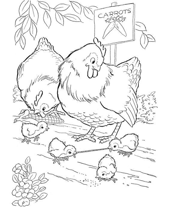 Tranh tô màu gia đình gà trong vườn