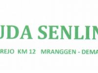 Lowongan Accounting di PT Jiuda Senlin Indonesia - Demak