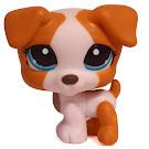 Littlest Pet Shop Dioramas Jack Russell (#1093) Pet