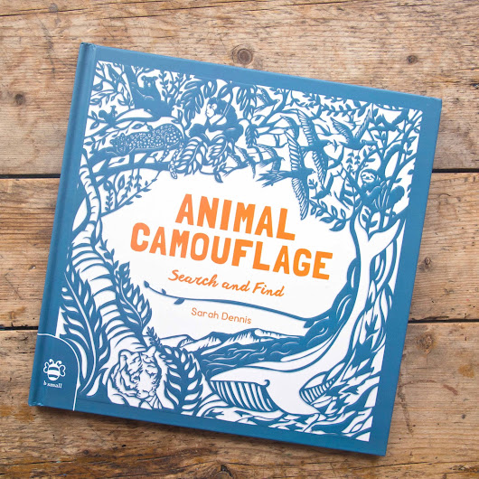 Animal Camouflage A Search and Find Activity Book