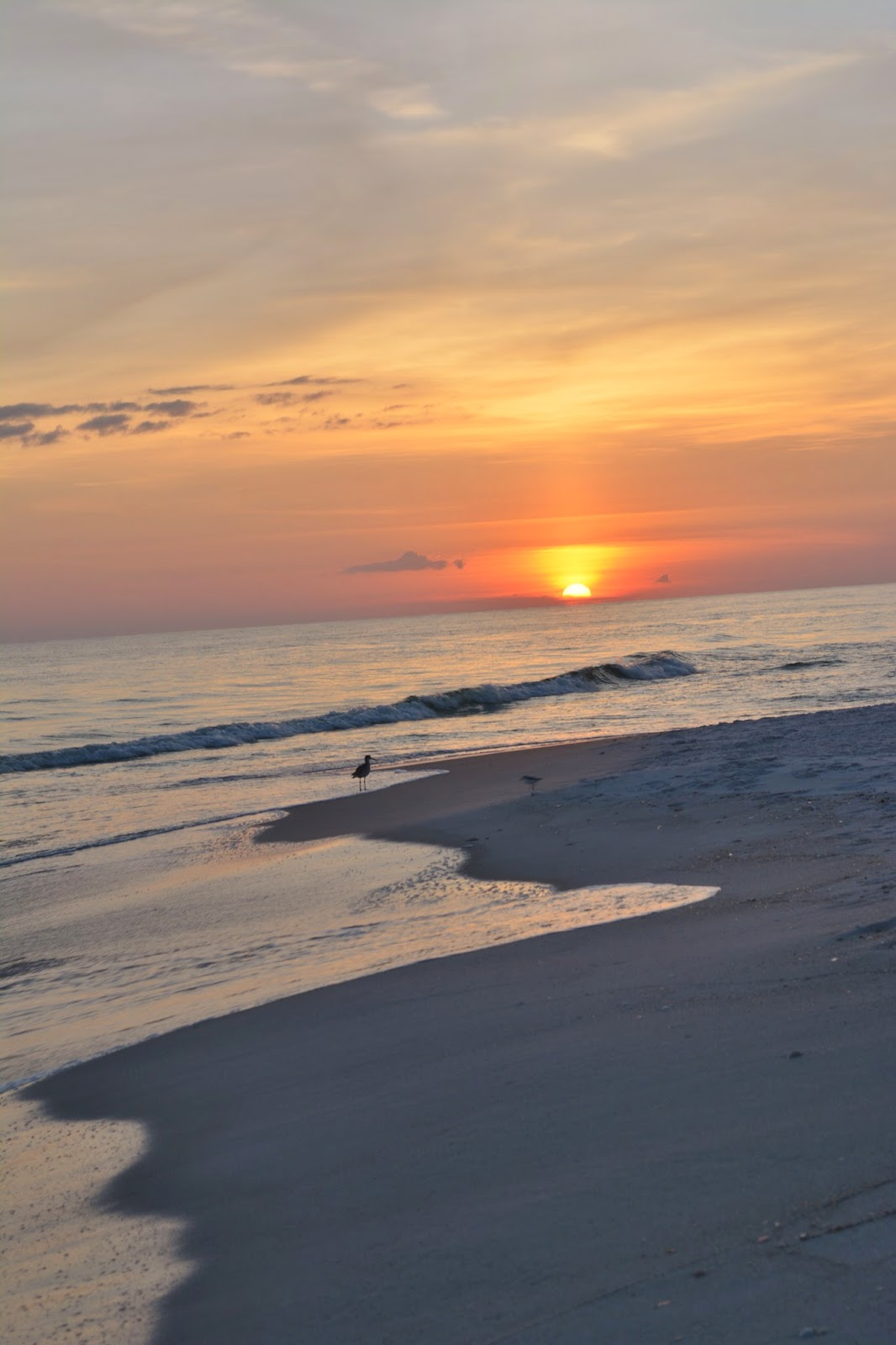 TeamRopesCourse: Florida Part 1: The Beach At Sunset