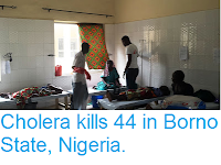 http://sciencythoughts.blogspot.co.uk/2017/09/cholera-kills-44-in-borno-state-nigeria.html