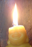 beeswax negative ions