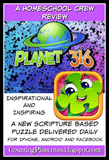 #hsreviews #dailybiblejigsaw