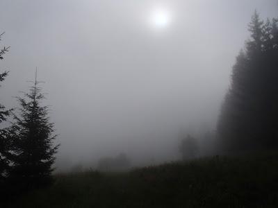 grzyby na Orawie, grzyby w lipcu, grzyby 2016, mgła, burza w górach, ucieczka przed burzą