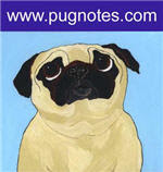 Pug Notes