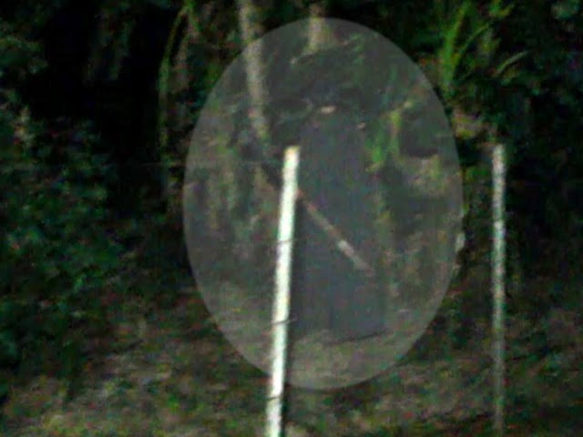 O homem de preto assombra o Jardim Ana Terra em Colombo.