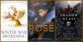 Young Adult Fantasy Series