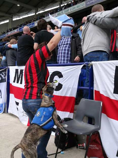 Dougie turns his back on the action with owner Lynn and Manchester City fans