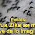 Pestes: Virus Zika es mas Grave de lo Imaginado