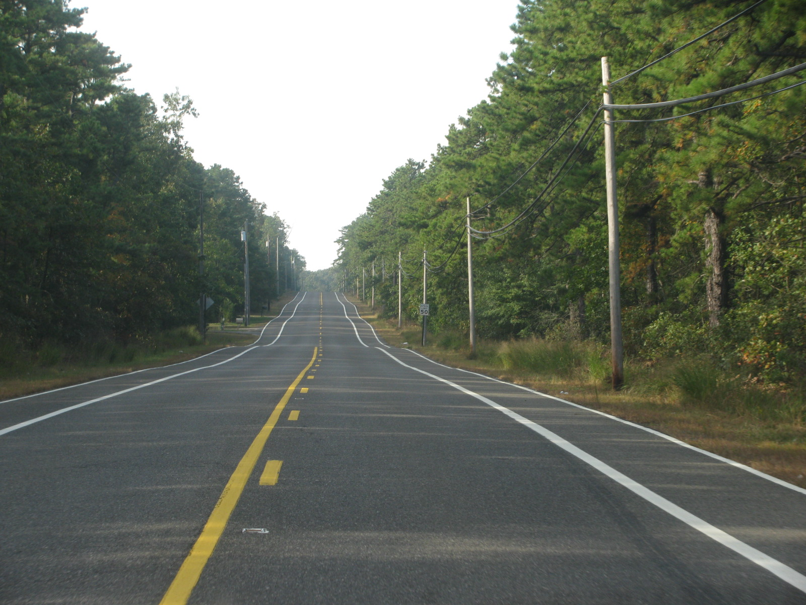Light In The West: Cheesequake, New Jersey to Assateague, Delaware