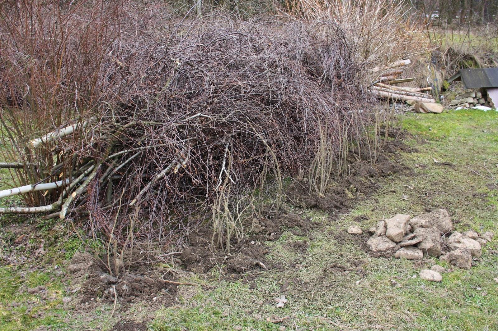 Wildes Gartenglück Totholzhecke Benjeshecke anlegen