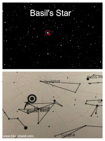 The Exact Location of Bionic Basil's Star in The Phoenix Constellation #BasilsStar
