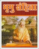 bhrigu pdf