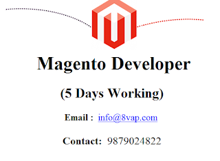 Magento Developer (5 Days Working)
