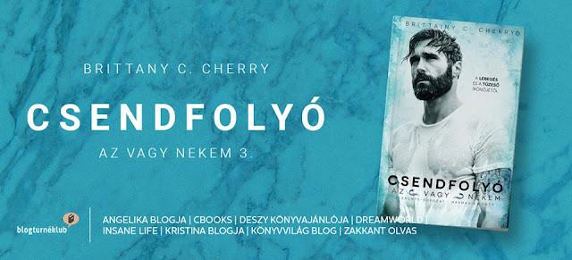 Brittainy C. Cherry: Csendfolyo