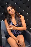 Sanjjana at her best expressions as aggresive cat   beautiful Actress Sanjjana Exclusive Pics 032.JPG