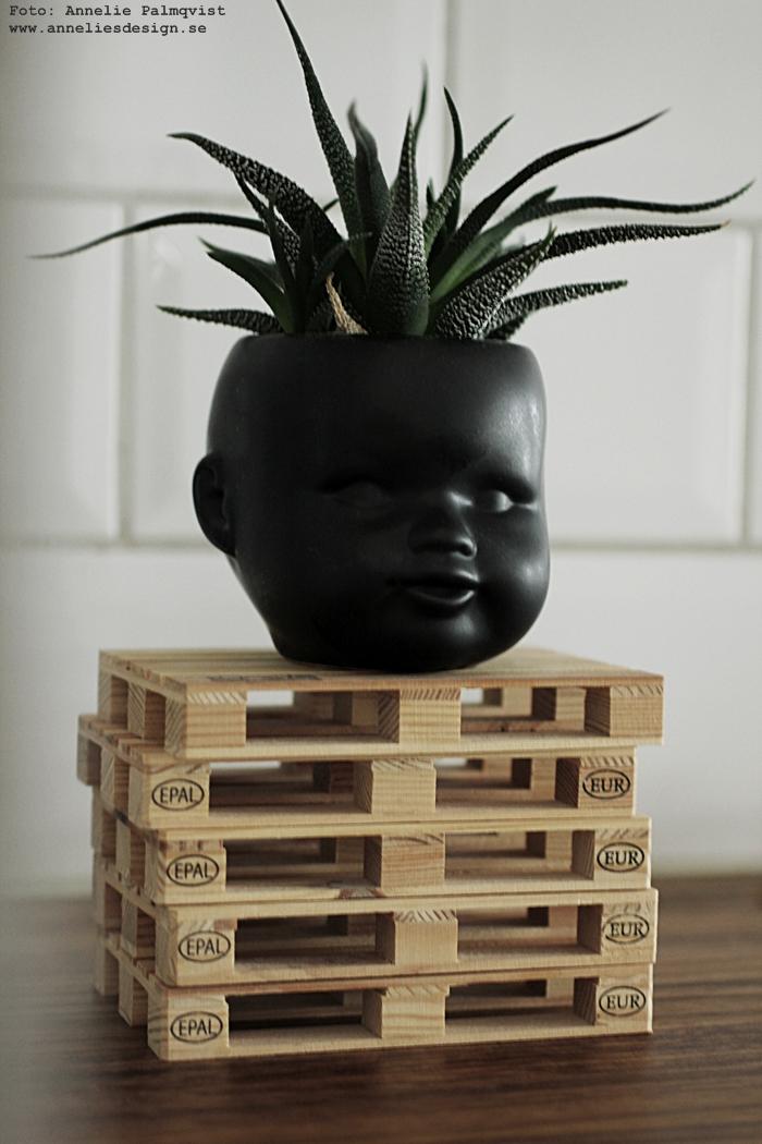 ansikte, kruka, krukor, ansiktet, annelies design, kaktus, kaktusar, inredning, webbutik, webbutiker, webshop, nätbutik, nätbutiker, minilastpall, minilastpallar, lastpall, lastpallar,