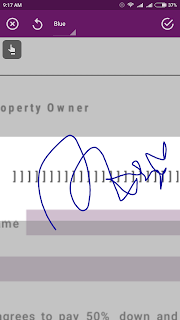 Significant Signature Capture
