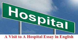 A Visit to A Hospital Essay in English