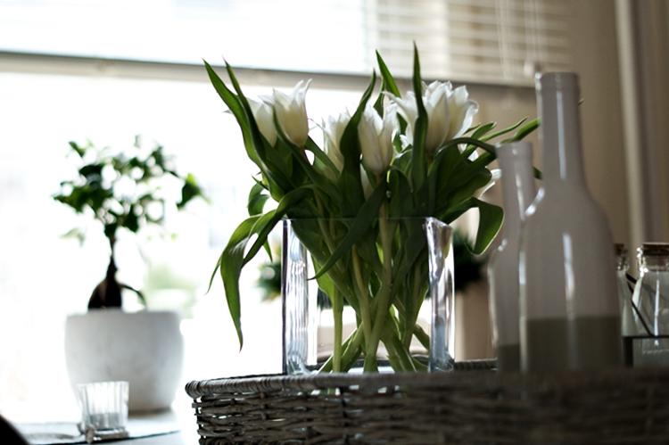 Spitze weiße Tulpen im Sonnenlicht  { by it's me! }