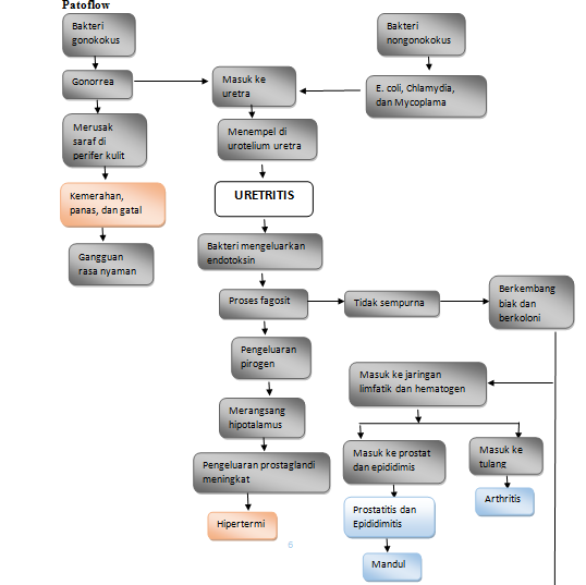 Pathway ISK : Uretritis Singkat