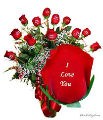 Wallpaper I Love You Dil : new letest hd wallpaper: Love rose dil hd wallpapers free downlod