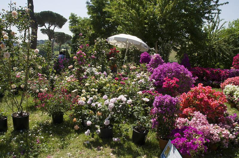 Il blog di dilloconunfiore Floracult evento cult di