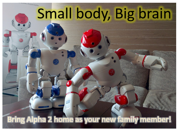 Robot Alpha 2 Small Body , Big Brain
