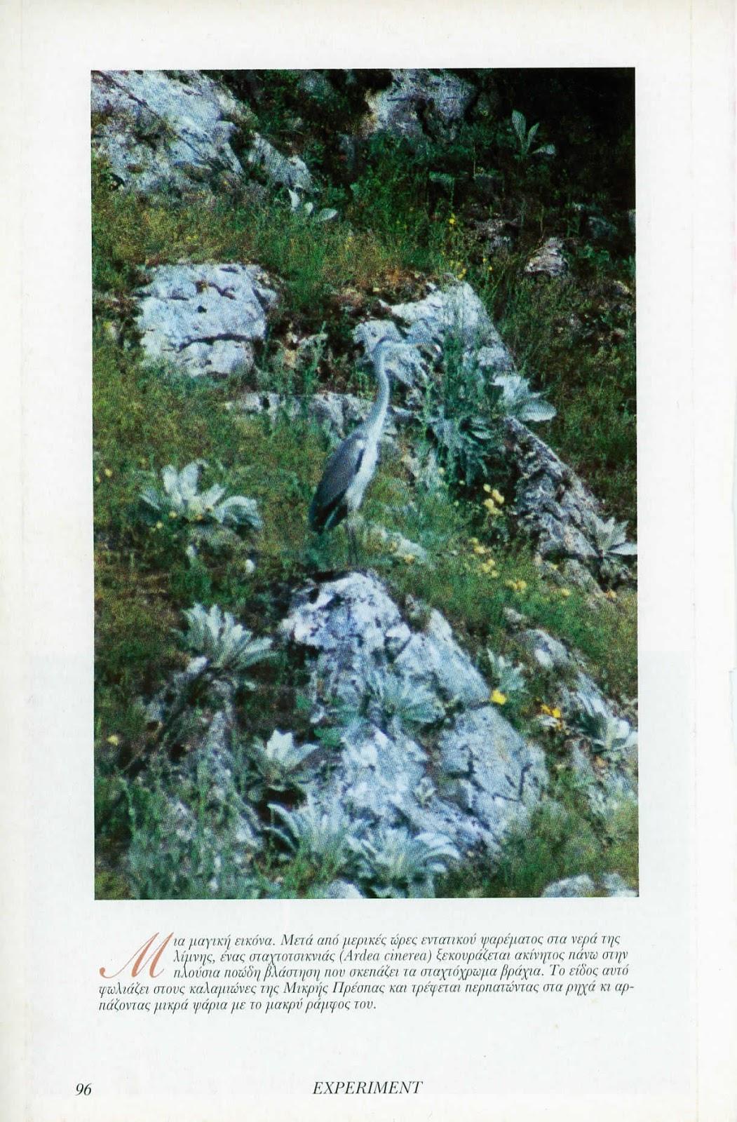 Μεθόδους απόλυτης χρονολογίων των βράχων
