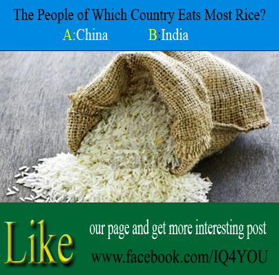 The People Of Which Country Eats Most Rice Intelligence