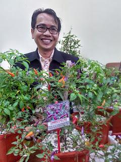 Guru Besar IPB Ciptakan Cabai Pelangi