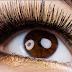 Bulu-bulu Mata tumbuh lebat dan panjang nan Lentik